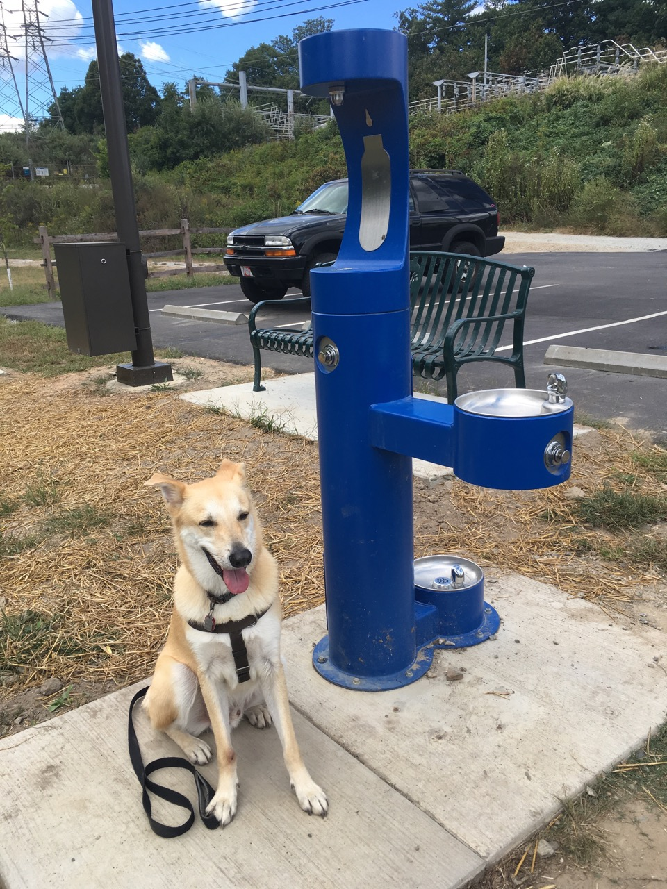Drinking Water Station